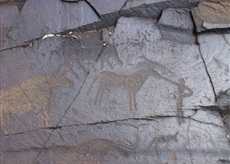 Tanbaly petroglyphs private sightseeing guided tour